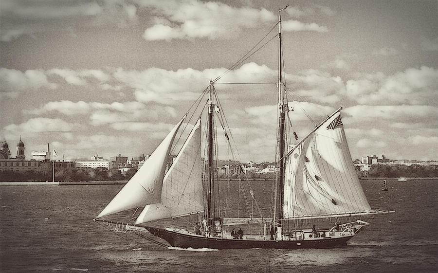 New York Harbor Photograph