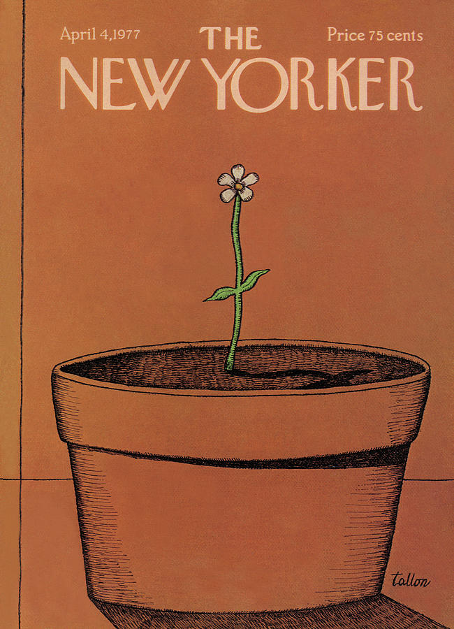 New Yorker April 4th, 1977 Painting by Robert Tallon