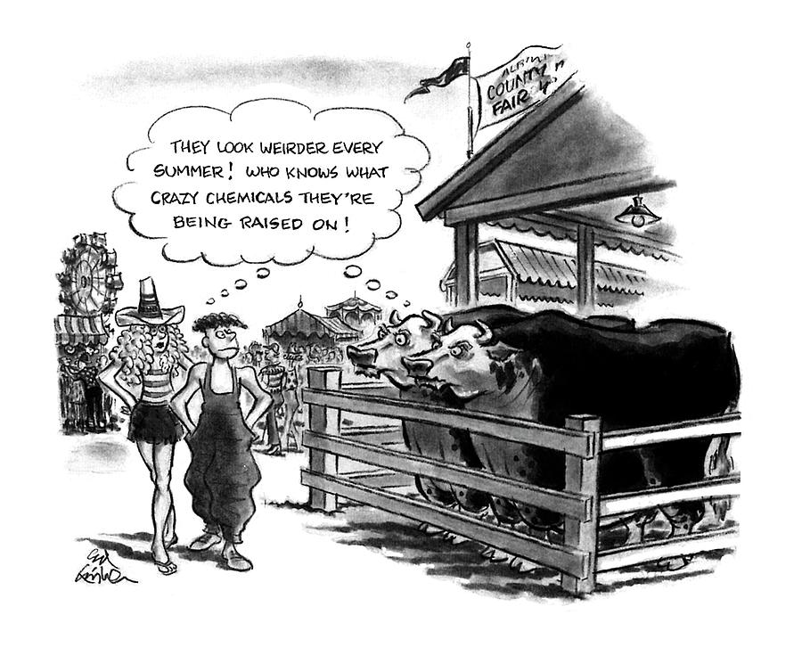 New Yorker August 10th, 1992 Drawing by Ed Fisher