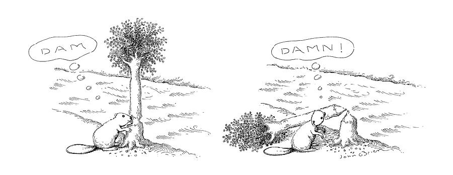 Animals Drawing - New Yorker August 22nd, 1988 by John OBrien