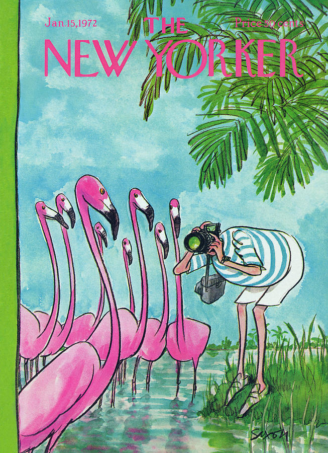 New Yorker January 15th, 1972 Painting by Charles Saxon