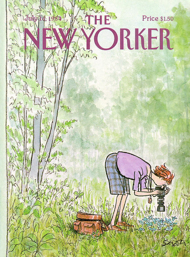 New Yorker July 16th, 1984 Painting by Charles Saxon