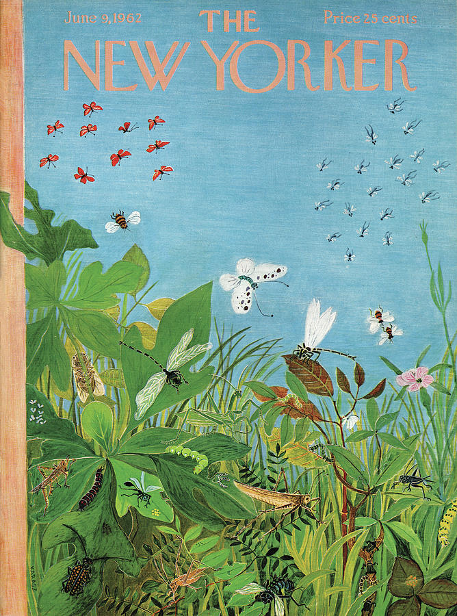 New Yorker June 9th, 1962 Painting by Ilonka Karasz