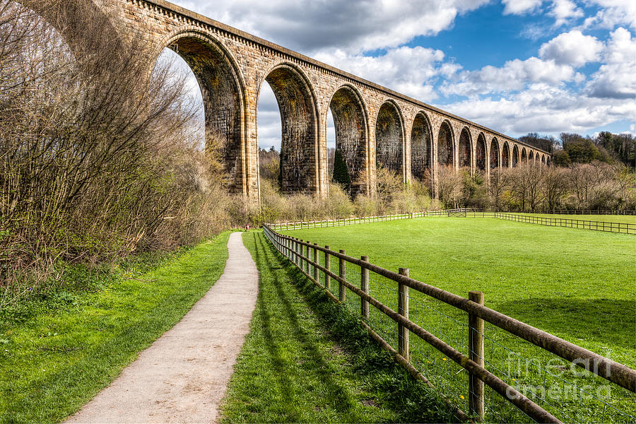 Ty Mawr Country Park Photograph - Newbridge Viaduct by Adrian Evans