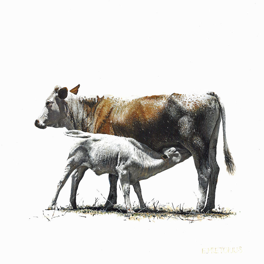 Nguni Painting - Nguni Cow and Calf 3 by Edgar Pretorius