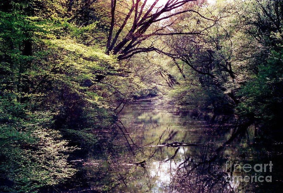 Ni River Photograph