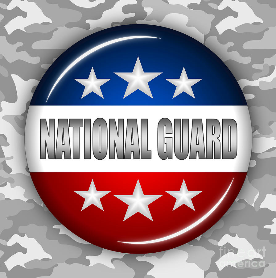 National Guard Digital Art - Nice National Guard Shield 2 by Pamela Johnson