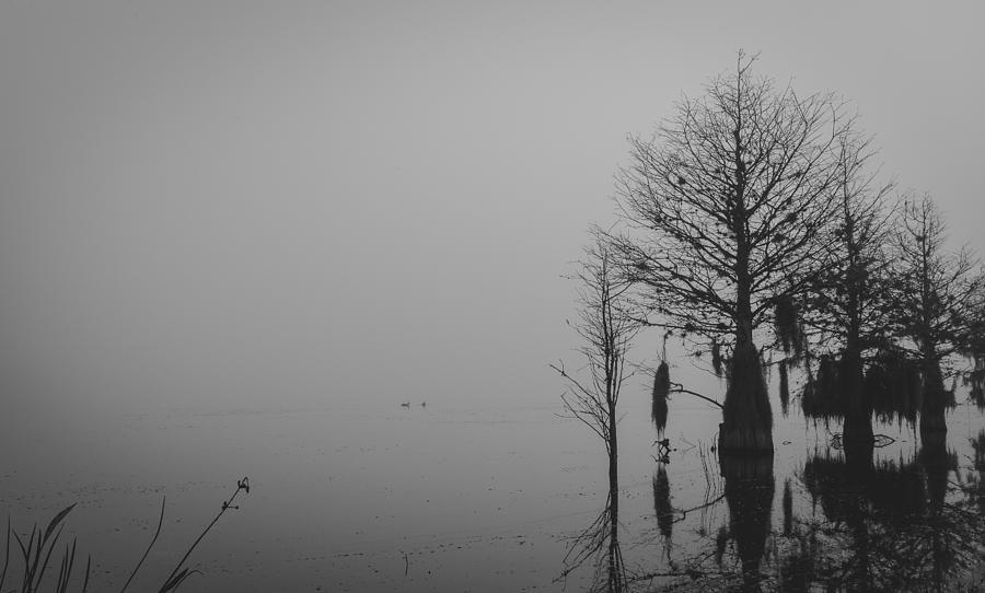 2014 Photograph - Niebla by Michael Paul