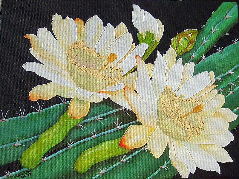 Acrylic Painting - Night Blooming Cacti by Carol Sabo
