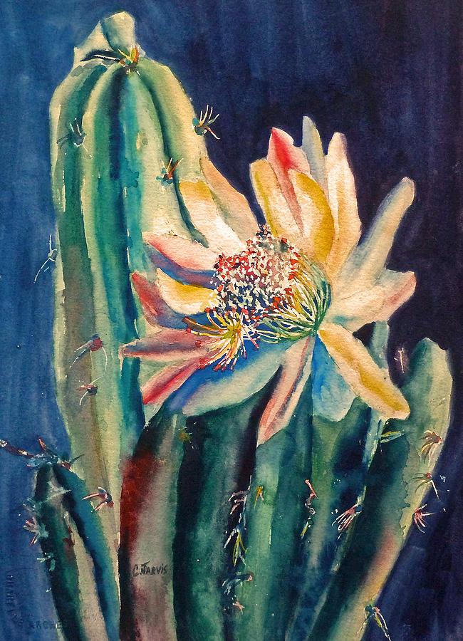 Peruvian Apple Cactus Painting - Night Blooming Cactus by Carolyn Jarvis