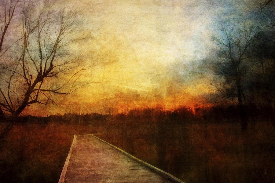 Sunset Photograph - Night Falls by Scott Norris