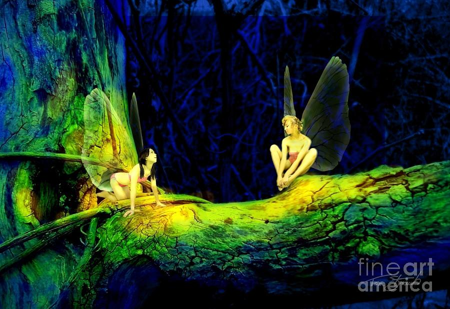 Faery Photograph - Night In The Cove by Tom Straub