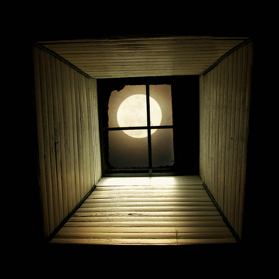 Moon Photograph - Night Light by Amy Tyler