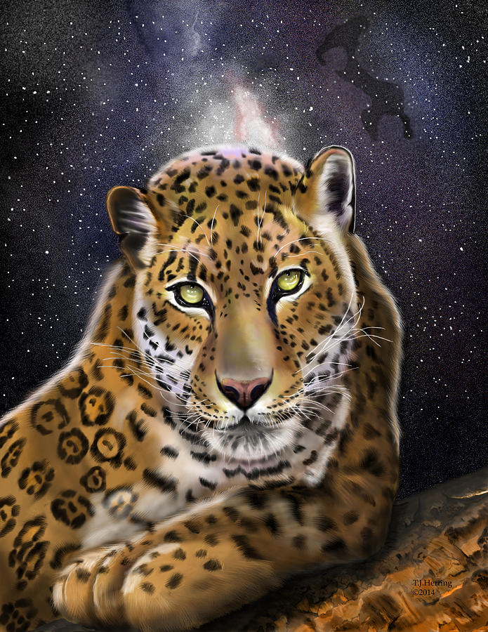 Fourth of the Big Cat Series - Leopard by Thomas J Herring