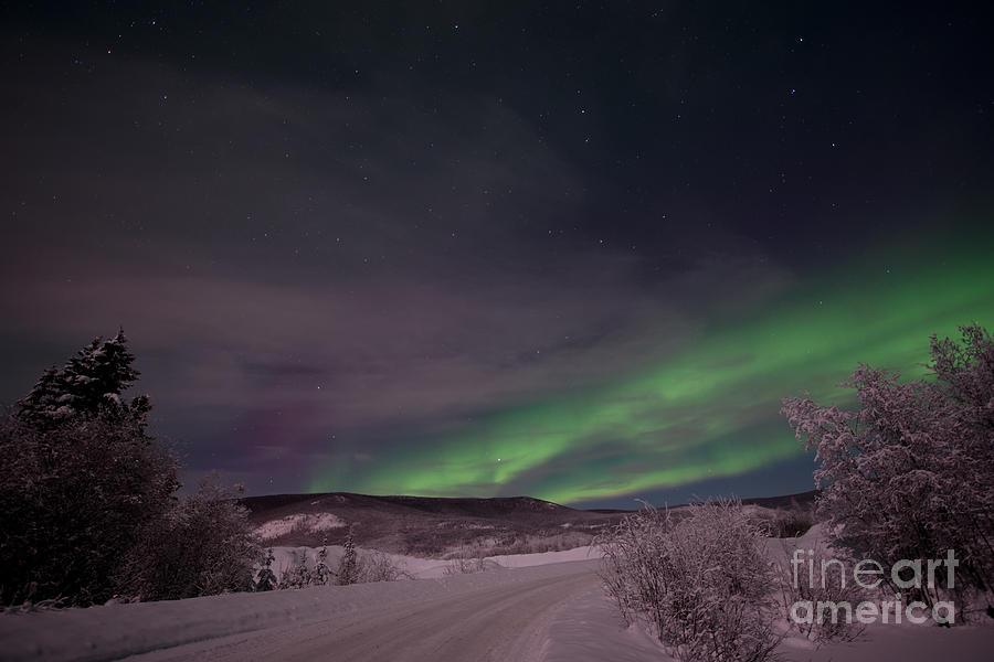 Snowy Photograph - Night Skies by Priska Wettstein