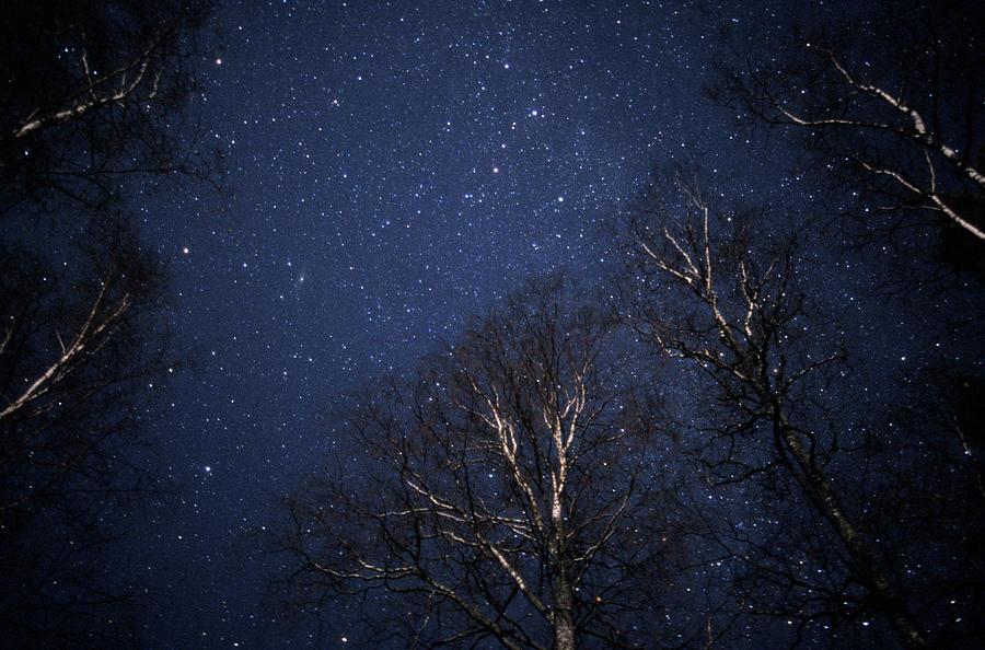 Sky Photograph - Night Sky by Pekka Parviainen/science Photo Library