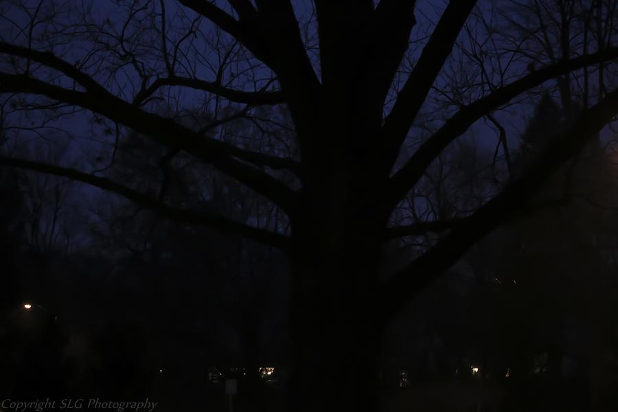 Night Photograph - Night by Stacie  Goodloe