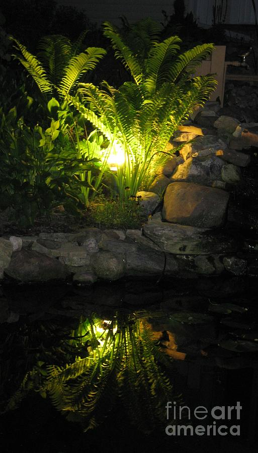 Water Photograph - Nighttime Reflection by Debbie Finley