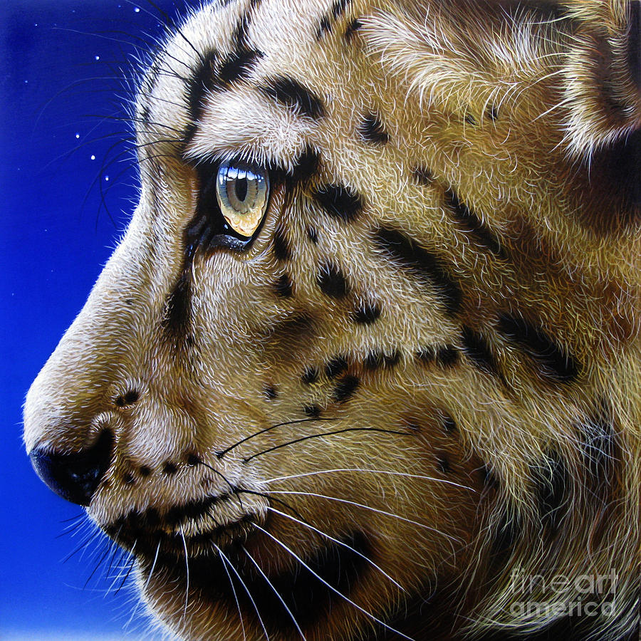 Snow Leopard Painting - Nina The Snow Leopard by Jurek Zamoyski