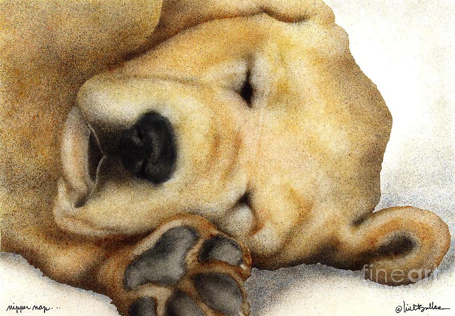 Will Bullas Painting - Nipper Nap... by Will Bullas