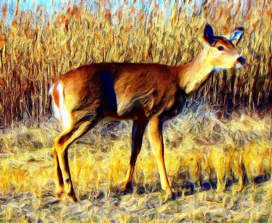 Deer Photograph - no fear II by Steve Doris