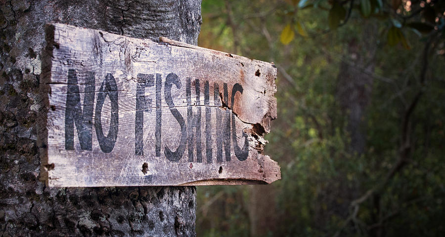 Signs Photograph - No Fishing by Brenda Bryant