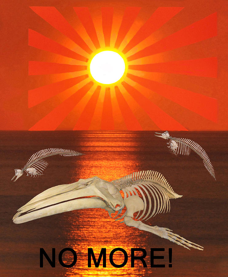 Sea Shepherd Digital Art - No More by Eric Kempson