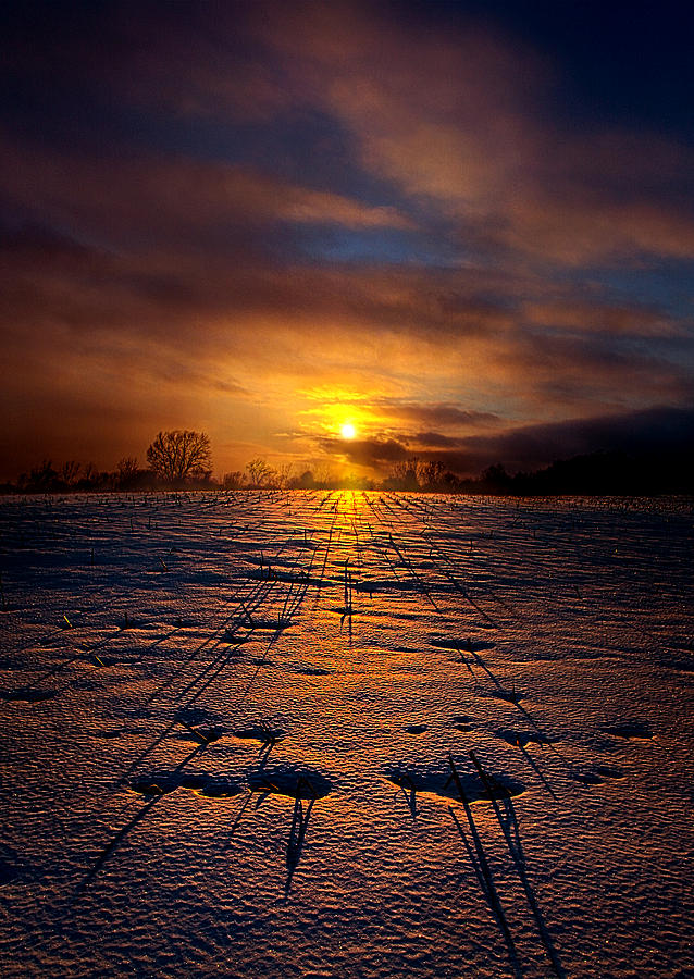 Horizons Photograph - No Rush by Phil Koch