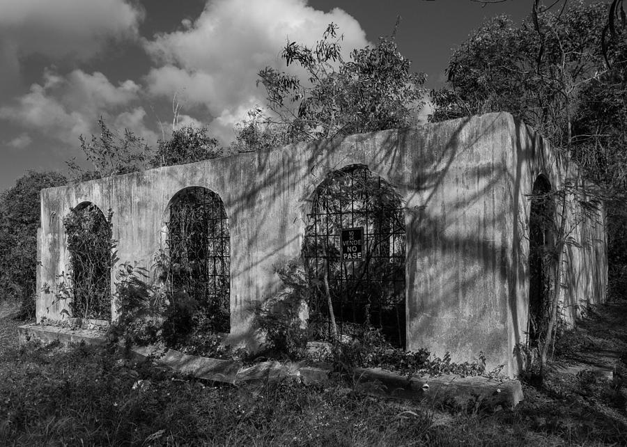 Decay Photograph - No Se Vende by Carl Engman