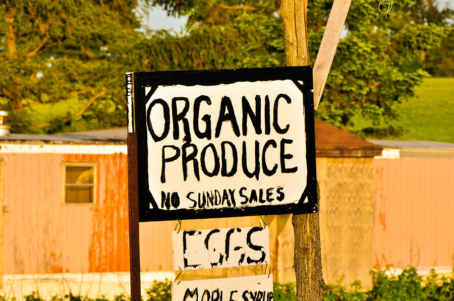 Sign Photograph - No Sunday Sales by BandC  Photography