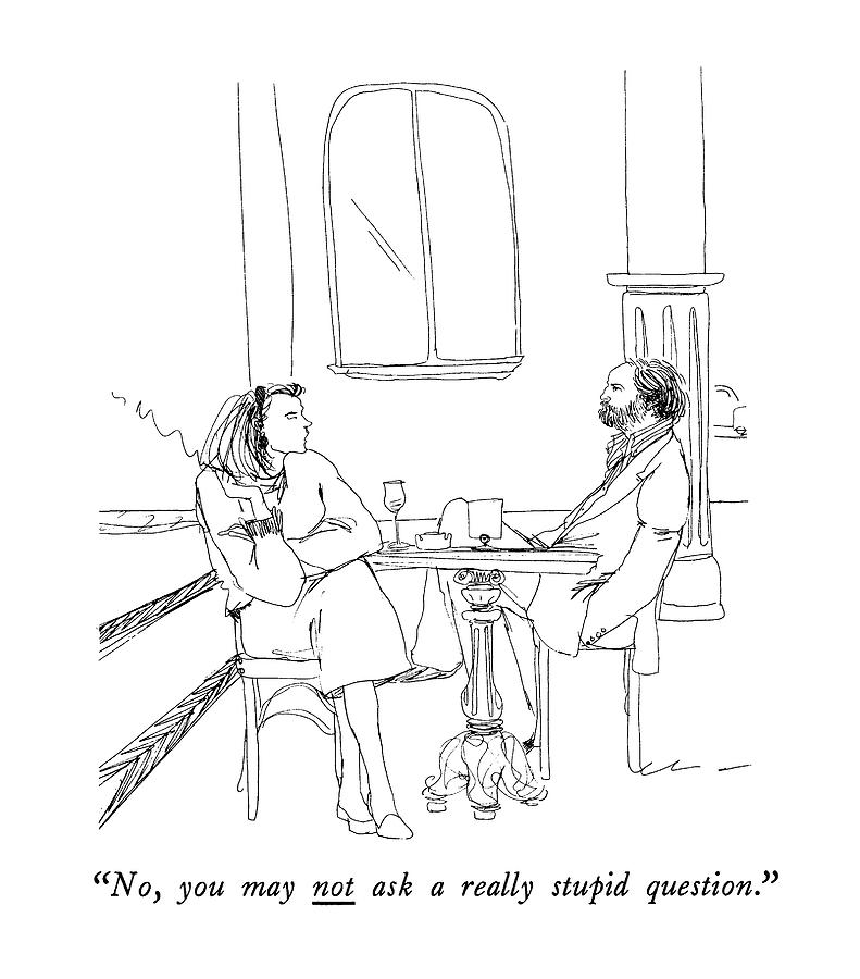 No, You May Not Ask A Really Stupid Question Drawing by Richard Cline