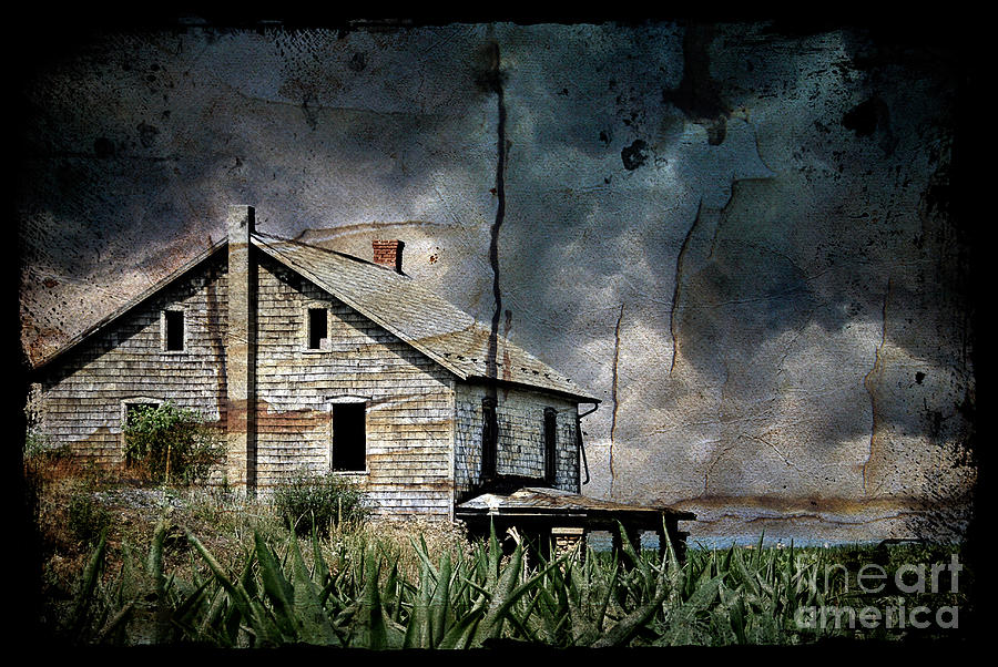 Farmhouse Photograph - Nobodys Home by Lois Bryan