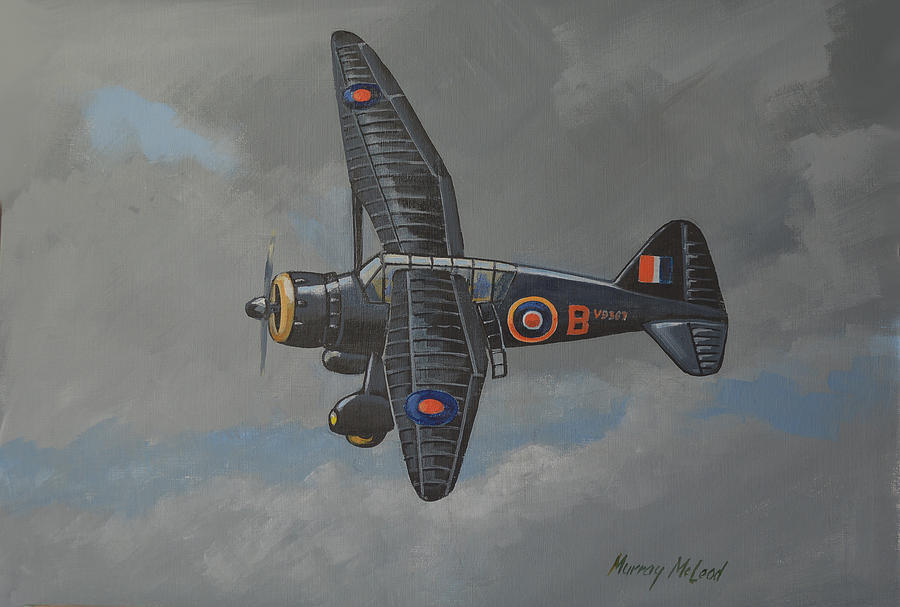 Nocturnal Lysander by Murray McLeod