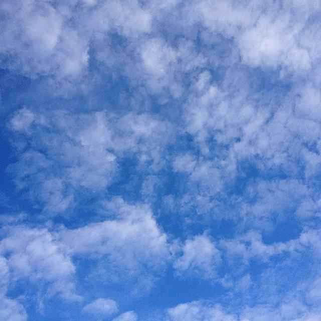 Awesome Photograph - #nofilter #view Out Of The #sunroof by Teresa Mucha