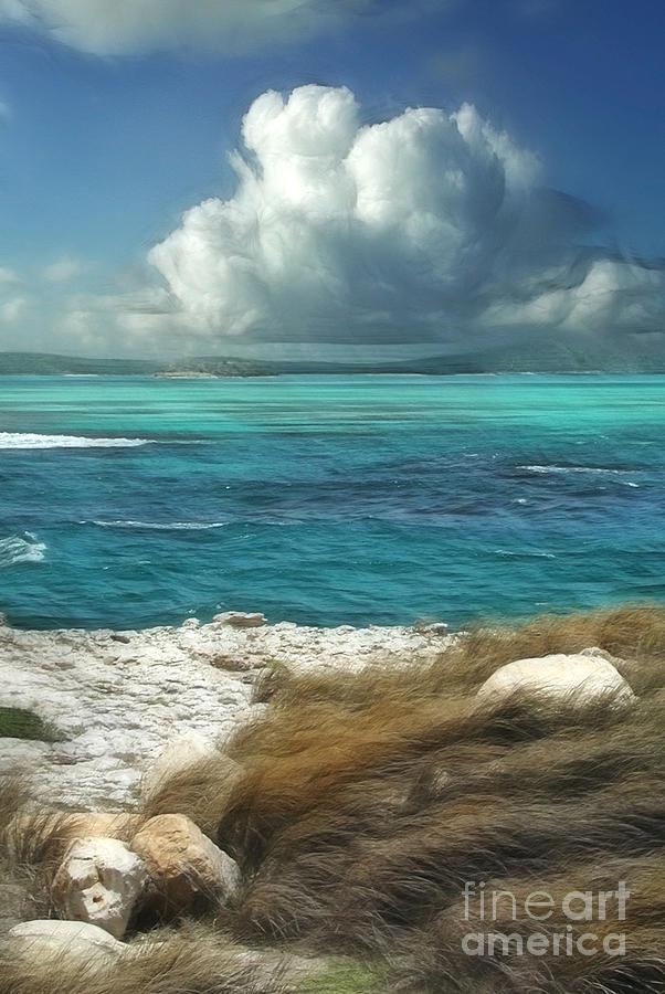 Antigua Painting - Nonsuch Bay Antigua by John Edwards