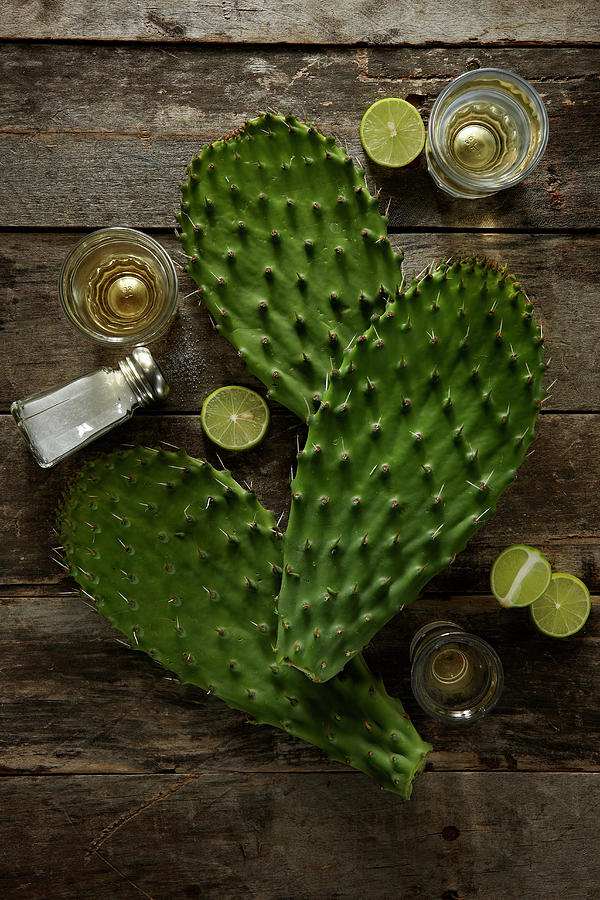Nopales And Tequila Photograph by Lew Robertson