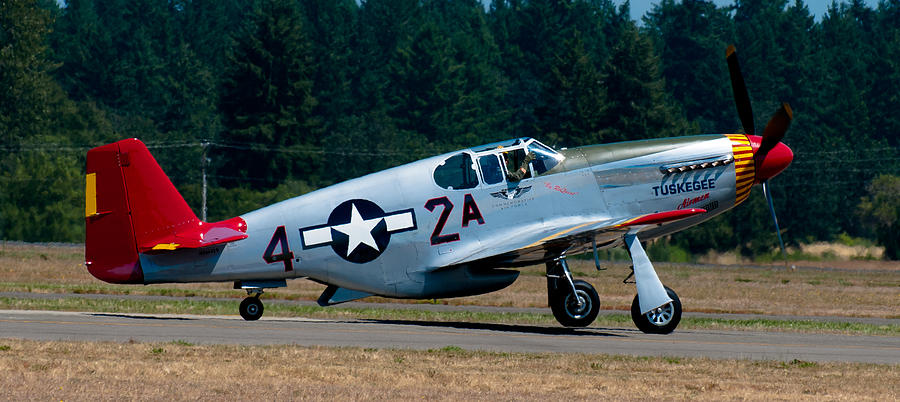 North American P-51 Mustang Photograph - North American P-51 Mustang by Chris McKenna