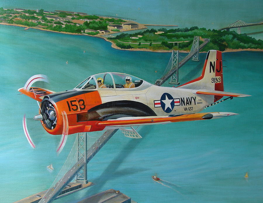 Aviation Painting - North American T-28 Trainer by Stuart Swartz