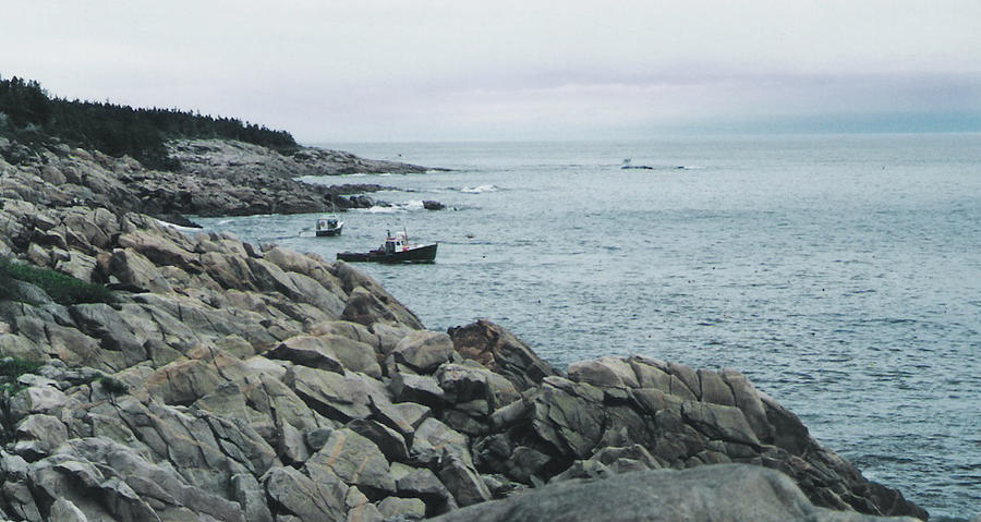Rocky Coast Photograph - North Atlantic by Christy Usilton