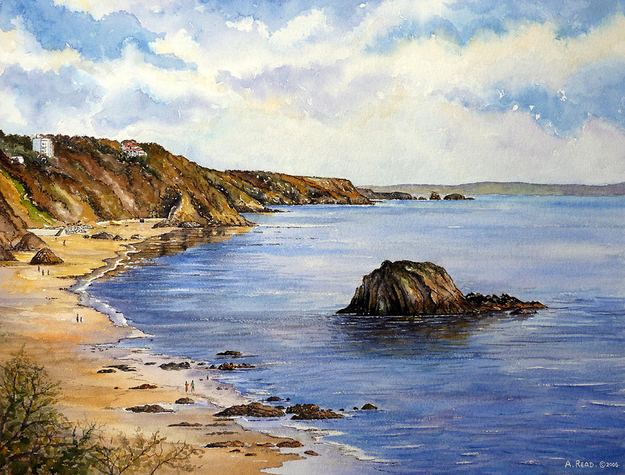 Tenby Painting - North Beach  Tenby by Andrew Read
