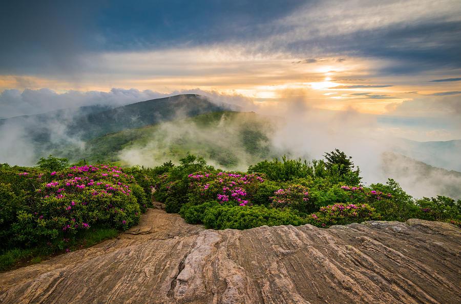 North Carolina Appalachian Trail Spring Blue Ridge Mountains Photograph