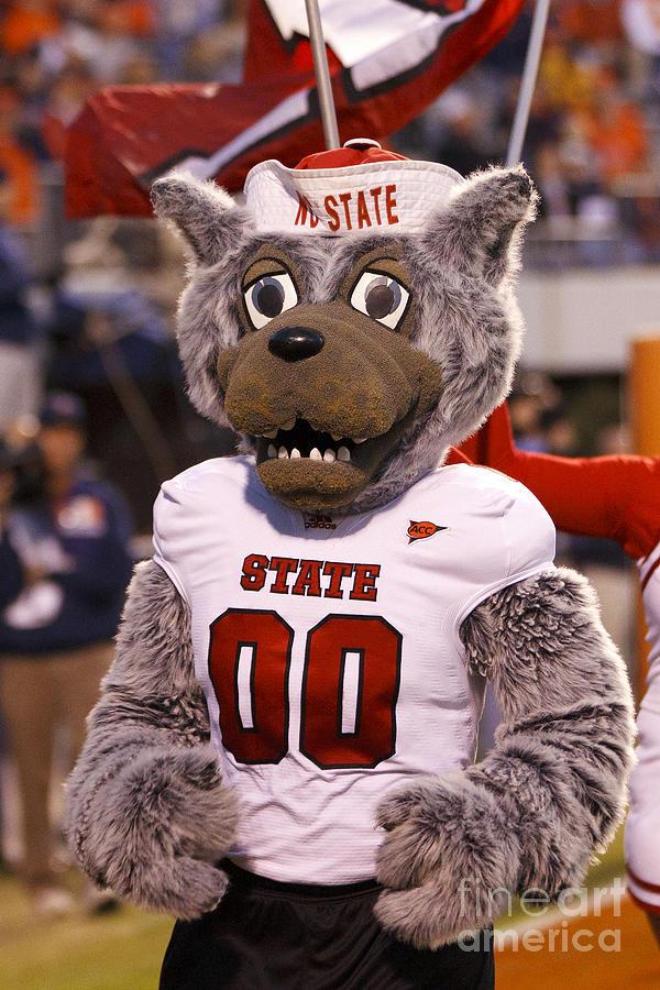 North Carolina State Wolfpack Mascot Photograph By Jason O