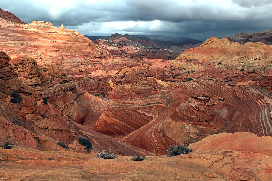 The Wave Photograph - North Coyote Buttes by Darryl Wilkinson