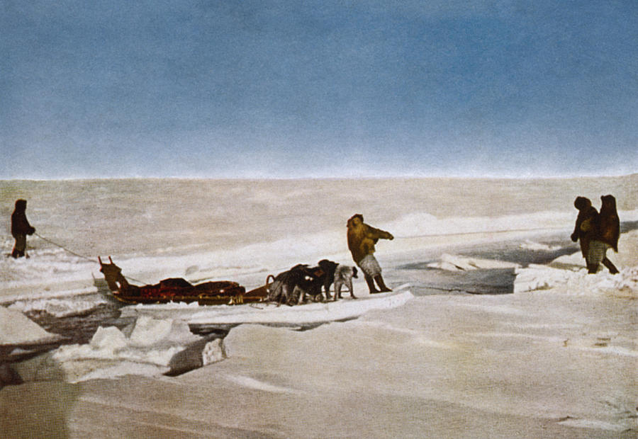 1910 Painting - North Pole Dog Sled, C1910 by Granger