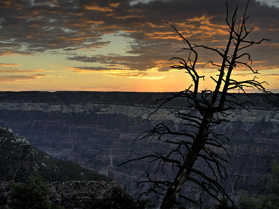 Bright Angel Point Photograph - North Rim Dawn by Mike Herdering