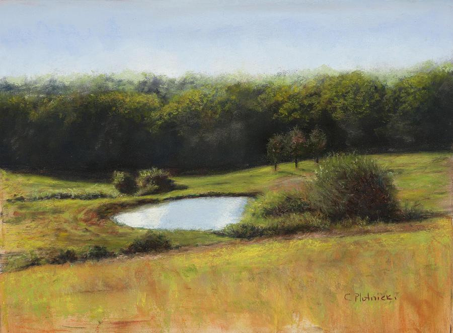 Landscape Pastel - North St. Upton Ma by Cindy Plutnicki