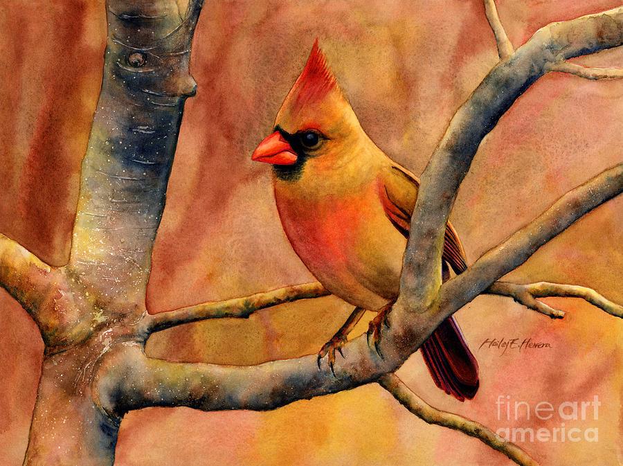 Cardinal Painting - Northern Cardinal II by Hailey E Herrera