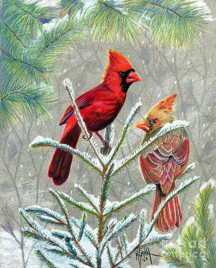 Northern Cardinals Drawing by Marilyn Smith
