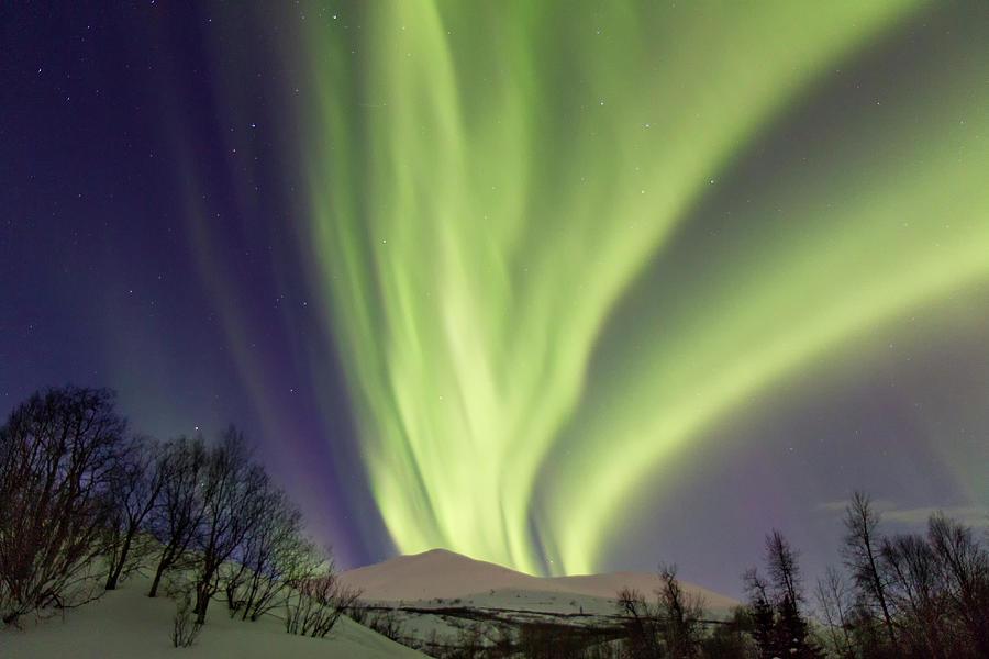 Northern Lights Photograph by Alaska Photography