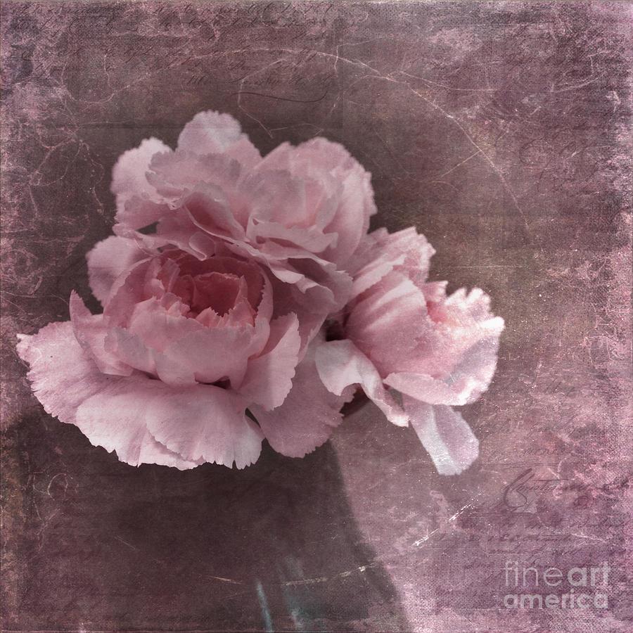 Carnation Photograph - Nostalgia by Priska Wettstein